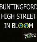 Buntingford's hanging baskets in 2015