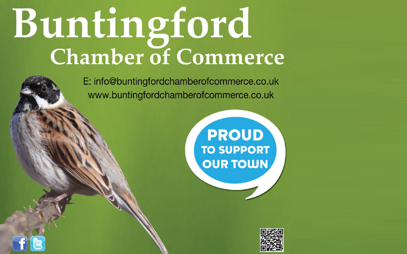 See The Business Directory